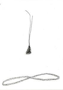 Harald Schole tekening004WEB