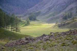 siberisch landschap