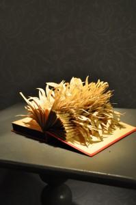 Boukje Voet, boek